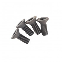 Systema PTW Grip End Screw Set